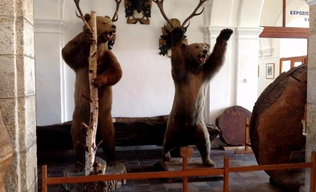 Muzeum Ohrada